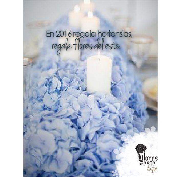 #navidad #añonuevo #floresdelestetogo #floresdeleste #hydrangea #hortensia