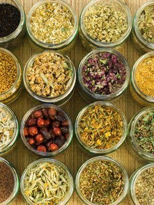 10 Healing Herbs Used in Teas...