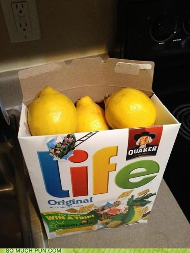 When Life Gives you Lemons - great white elephant gift!