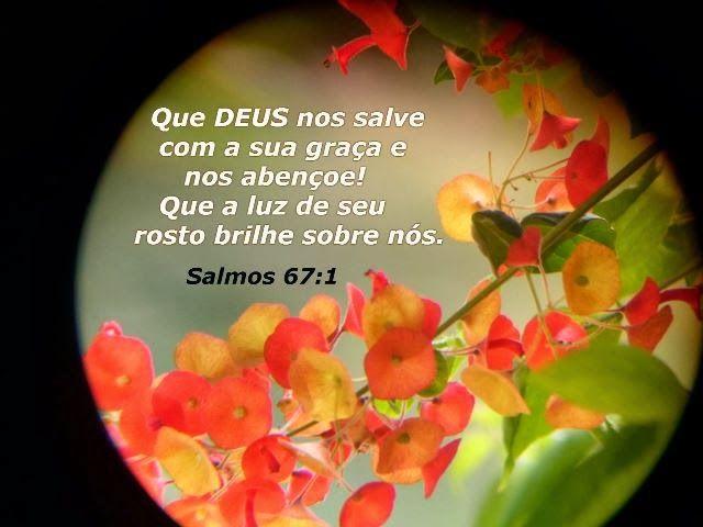SALMO 67 Que Deus tenha misericórdia de nós e nos abençoe, e faça resplandecer o seu rosto sobre nós, Pausa para que sejam conhecidos na terra os teus caminhos, a tua salvação entre todas as nações. Louvem-te os povos, ó Deus; louvem-te todos os povos. Exultem e cantem de alegria as nações, pois governas os povos com justiça e guias as nações na terra. Pausa Louvem-te os povos, ó Deus; louvem-te todos os povos. Que a terra dê a sua colheita, e Deus, o nosso Deus, nos abençoe! Que Deus nos…