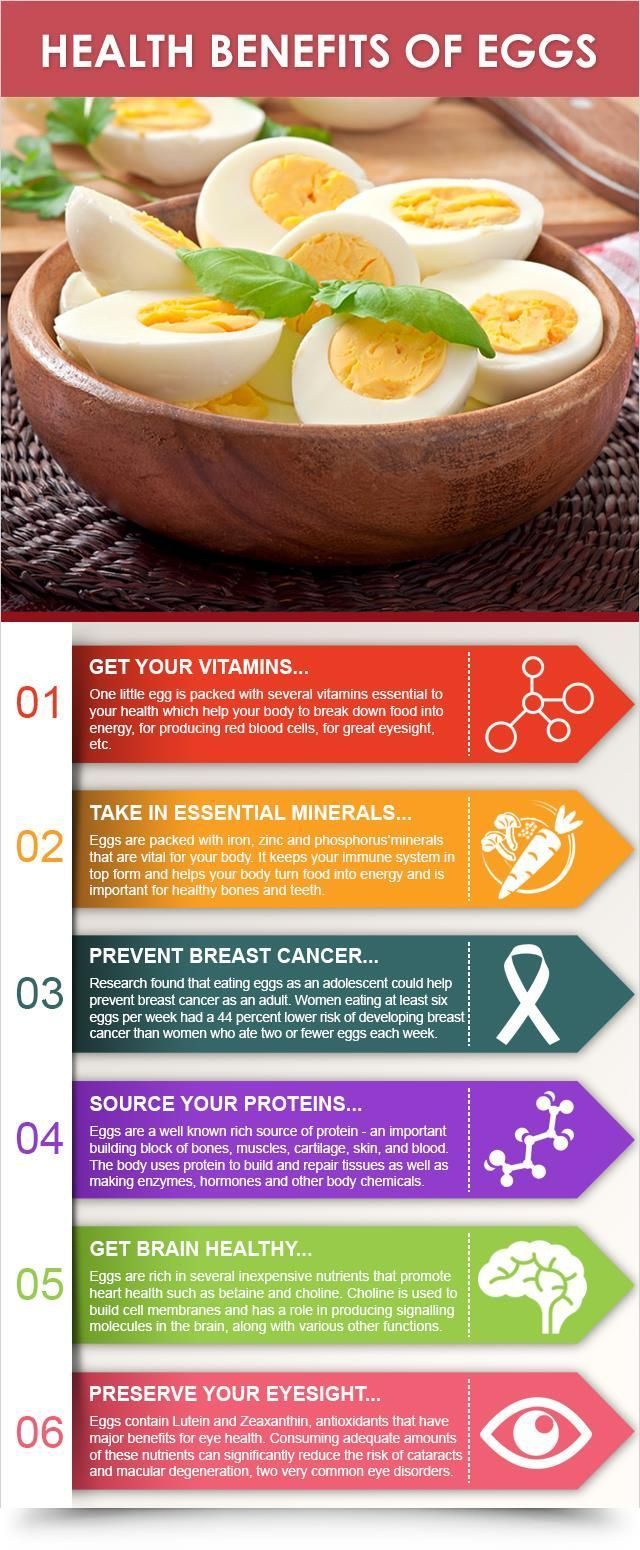 Health Benefits Of Eggs : Health Products For You