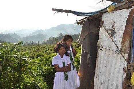 Flickor i sina skoluniformer på Sri Lanka