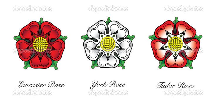I knew where the Tudor rose (the current floral emblem for England) came from, but always confused the two houses associated with the red and white roses.  Now I know.
