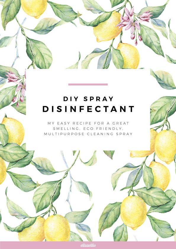 DIY Disinfectant Spray by Eliza Ellis