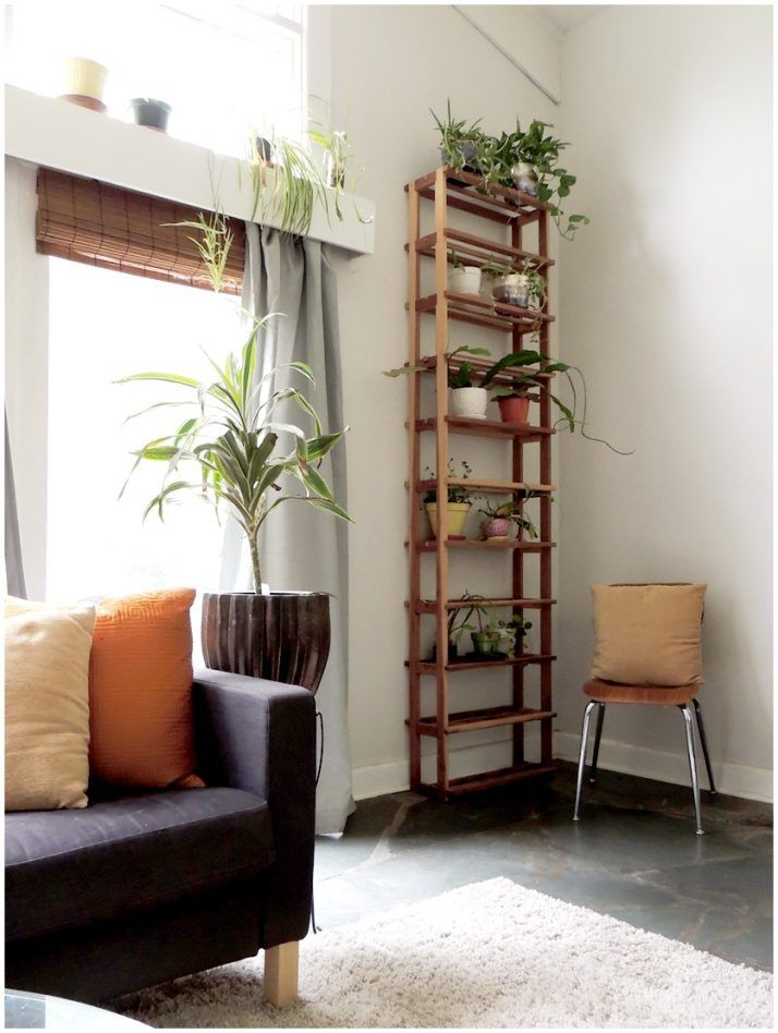 Foyer Plant Stand : Best plant ledge decorating ideas on pinterest