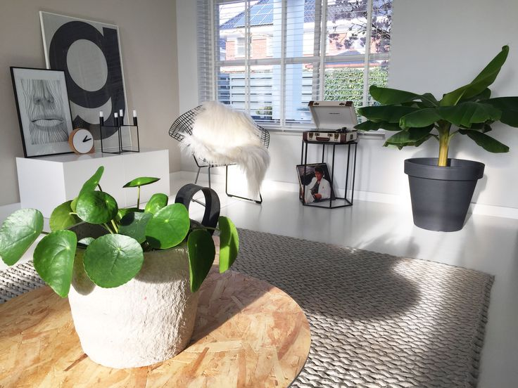 1000+ images about @ H O M E on Pinterest  Taupe, Tuin and Vase
