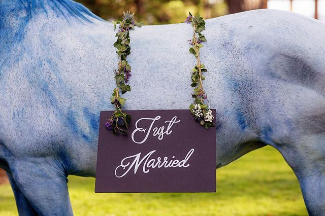 Just married sign hanging on a hand-painted horse. Image: Richard Lander