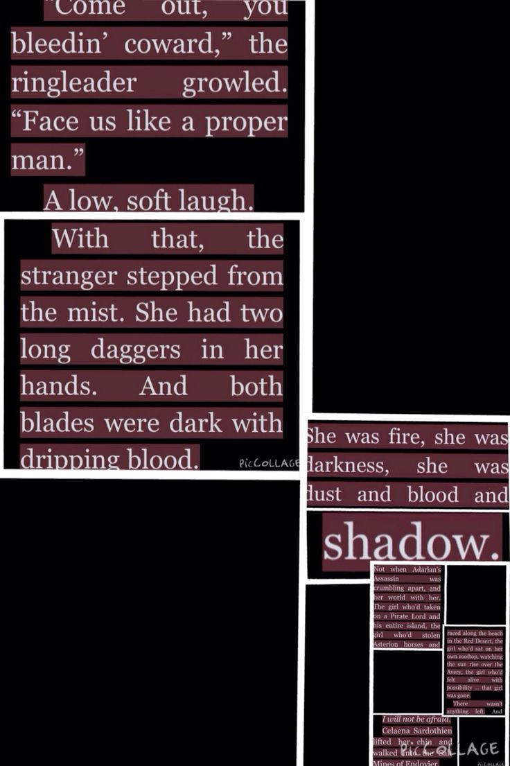 Heir Of Fire Quotes