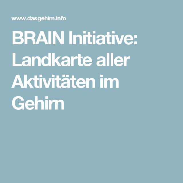 BRAIN Initiative: Landkarte aller Aktivitäten im Gehirn
