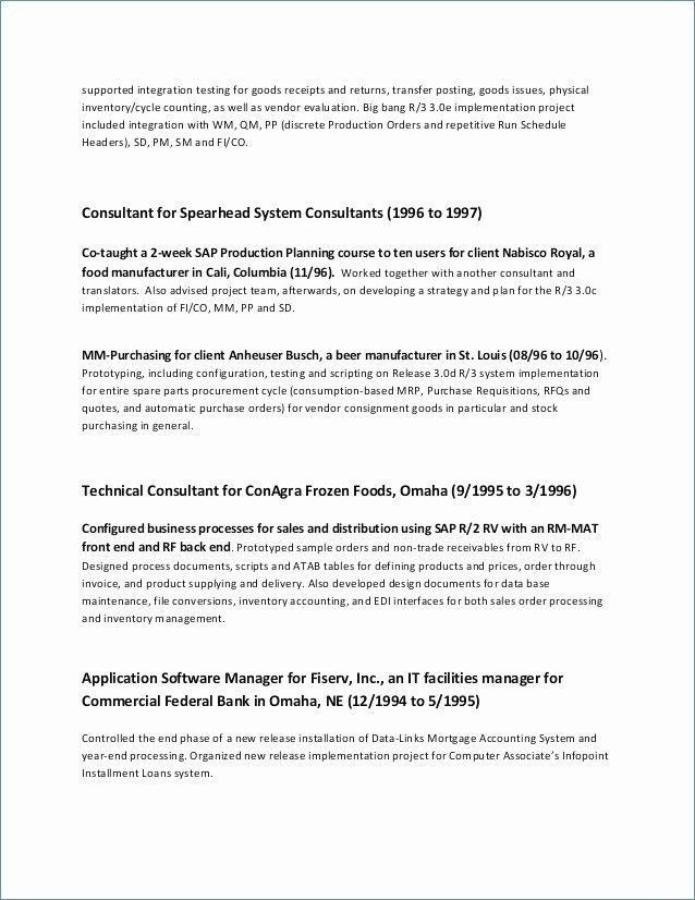 26 Executive Summary For Resume Template Sederhana
