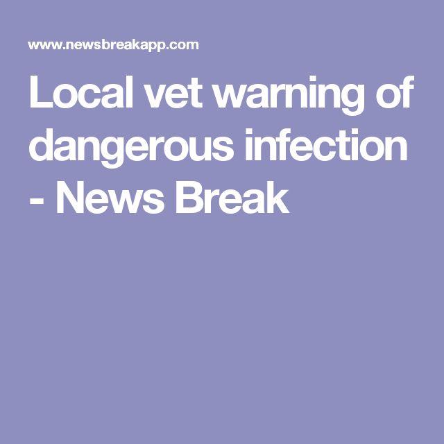 Local vet warning of dangerous infection - News Break
