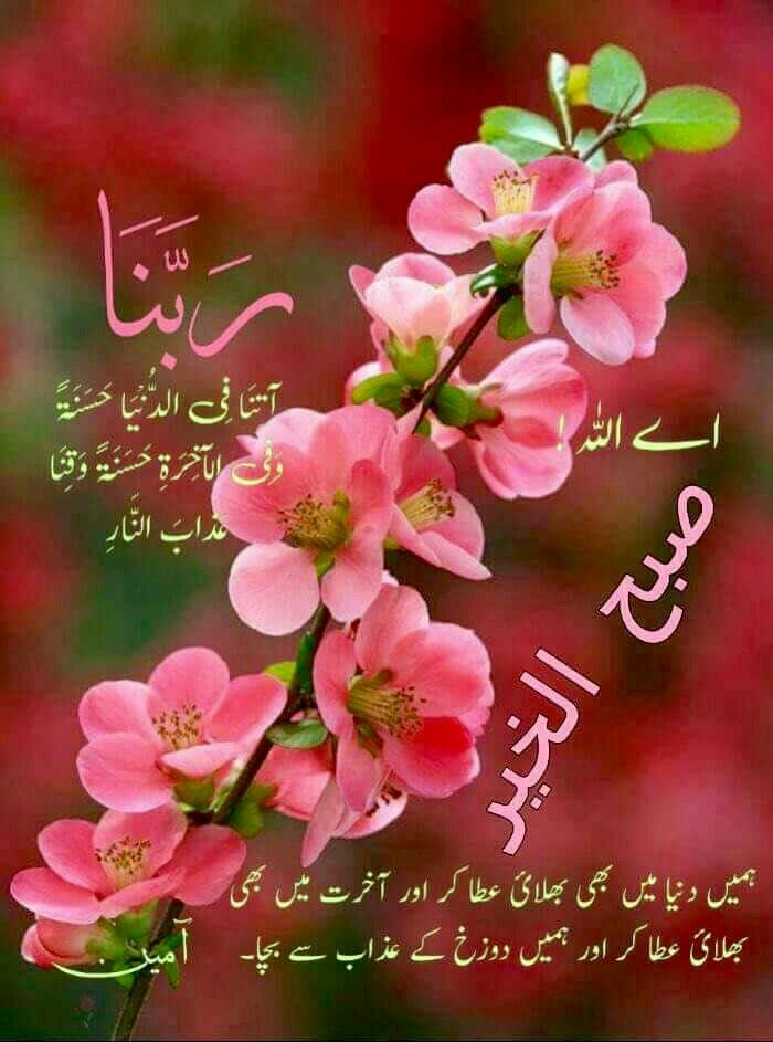 Pin by Misbah Khan on Good Morning   Morning dua, Dua in
