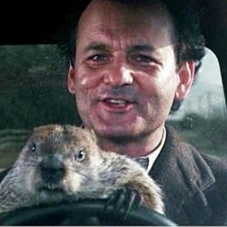 Groundhog Day: Why are we still doing this?
