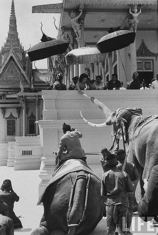 vintage everyday: Jackie Kennedy feeding an elephant outside the royal palace. November 1967