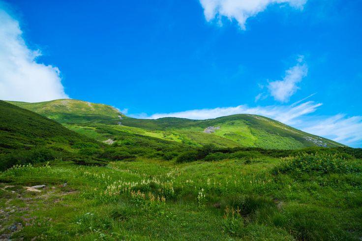妖精が住む森へようこそ!乗鞍岳の麓に五色ヶ原が美しすぎる! - Find Travel