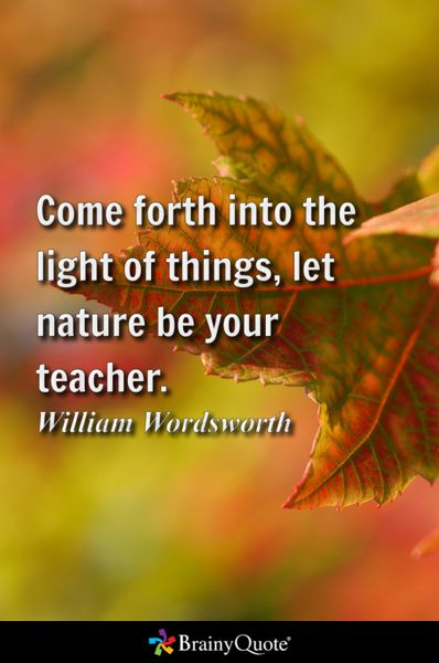 Come forth into the light of things, let nature be your teacher. - William Wordsworth