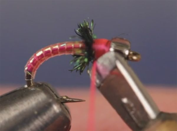 Video Tuesday Tip: How to Use a Whip-Finish Tool to Cut Thread - Orvis News