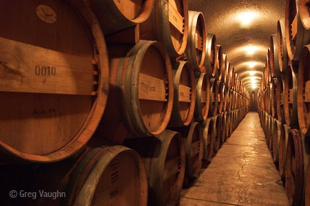 59 best Wineaux Anonymous! images on Pinterest