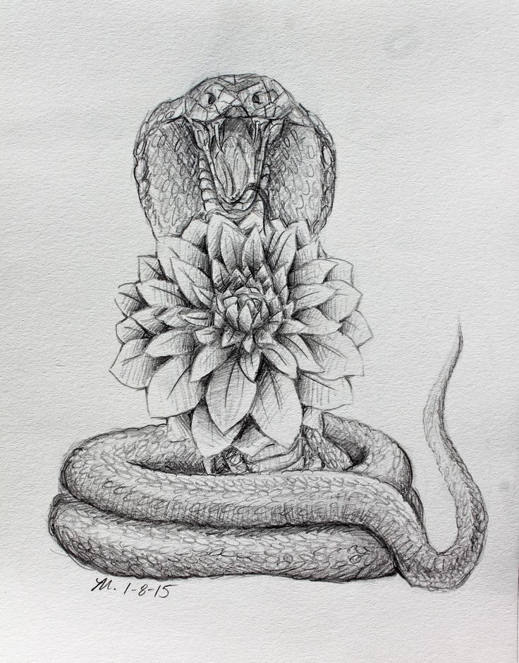 dahlia flower tattoo black and white – Google Search