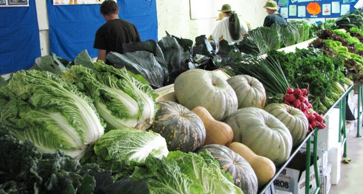 The Uraidla and Summertown Country Show: Vegetable display | InDaily
