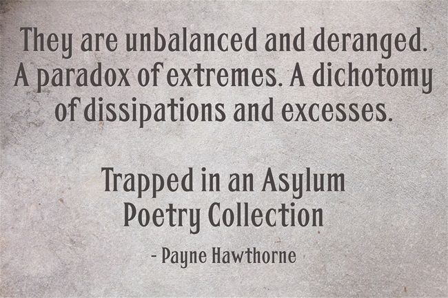 They are unbalanced and deranged. A paradox of extremes. A dichotomy of dissipations and excesses.  Trapped in an Asylum Poetry Collection