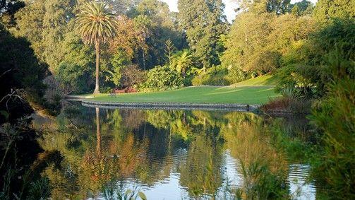Ornamental Lake at RBG Melbourne