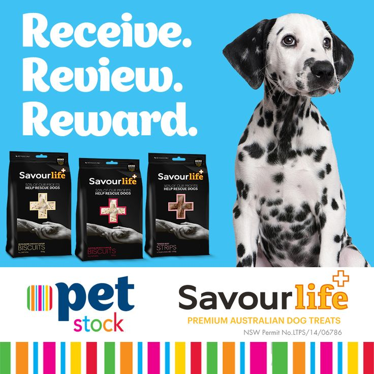Read what our PETstock Reviewers and their Buddies thought of the SavourLife treats! Stay tuned for more great Receive.Review.Reward products.