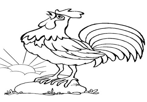 Portuguese Rooster Coloring Page Coloring Pages Farm Animal