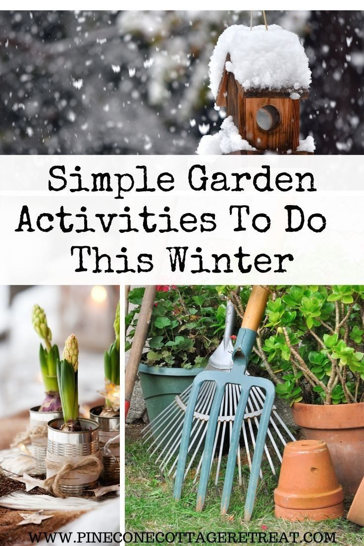 6220fd94ec3c2b86ef537cee1bf50c28 - What Can Gardeners Do In Winter