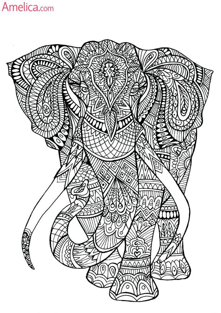 Раскраски арт-терапия скачать бесплатно, картинки - раскраски антистресс для взрослых: бабочки, животные, птицы