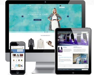 Responsive Designs - Setting up electronic commerce website that can be viewed on mobile devices. This include cellphones and laptops. For more information you visit us @ http://www.ecomland.co.za