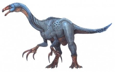 Beipiaosaurus, Early Cretaceous (124.6 Ma), Discovered by Xu, Tang & Wang - 1999