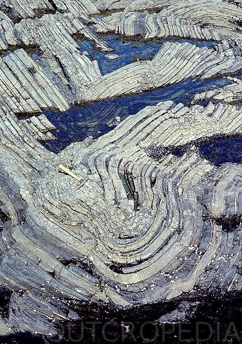 Brecciated core of concentric fold. Grosses Roches, Quebec