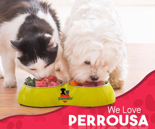 Feed Your Pets With The Best Of Natural Pet Foods Manufacture By Perrousa We Are One Of The Quality Nutritious Pet Food Food Animals Pets Animal Nutrition