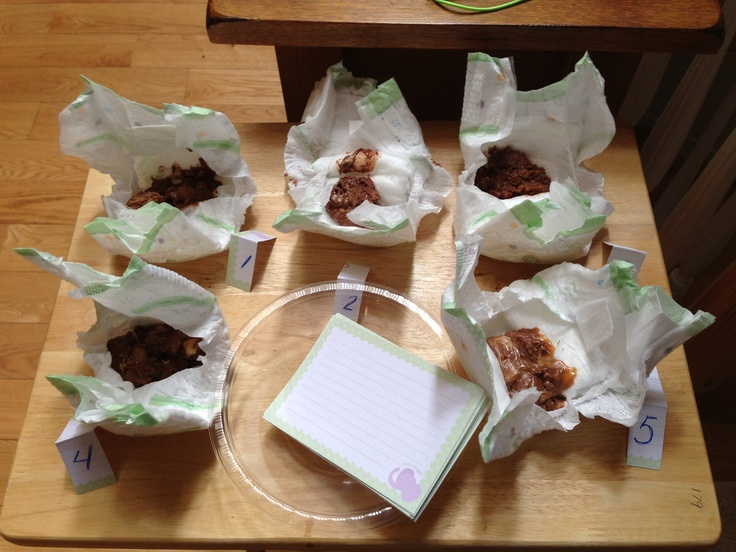 Dirty diaper game- melt different candy bars and put in diapers and