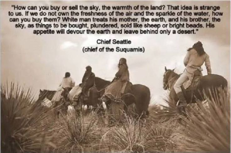 an analysis of native american wisdom by chief seattle About us click here to learn  editor-in-chief  the luxury, native american wisdom and stunning views on offer sufficed to entice tiger woods and ringo starr.