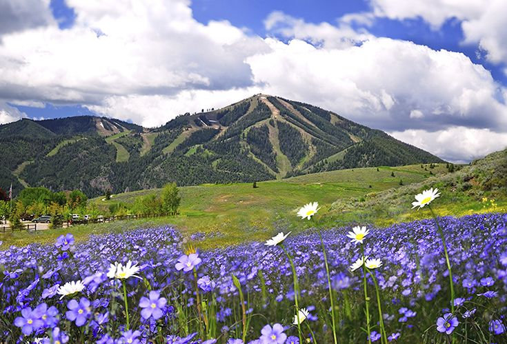 """Sun Valley: Idaho's year-round playground"""