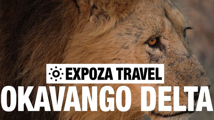 Okavango Delta Vacation Travel Video Guide