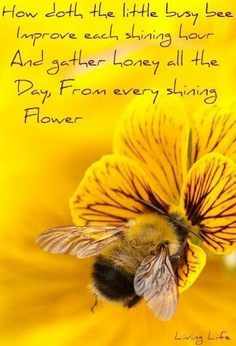 Shakespeare herbs quotes