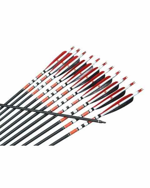 Esistono tanti tipi di aste in carbonio, alluminio, alluminio/carbonio e in legno per ogni specialità di tiro con l'arco.