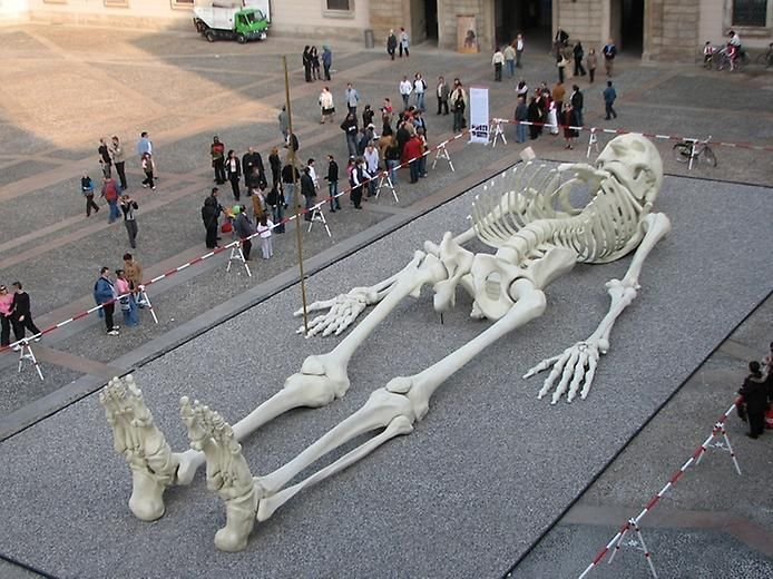 92 feet sculpture in the form of a human skeleton created by, Skeleton