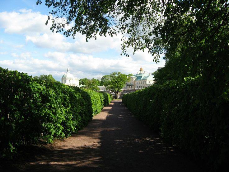 г. Ораниенбаум (ныне Ломоносов). Дворцово-парковый комплекс. Лиственный лабиринт)