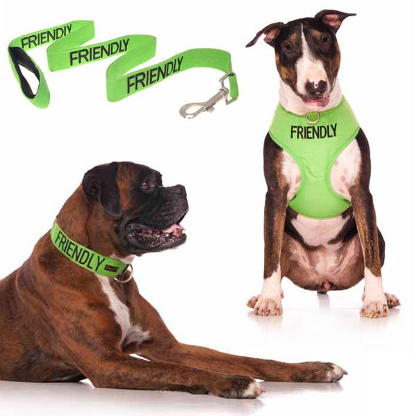 10% off green FRIENDLY medium combo sets plus FREE SHIPPING within Australia. Models: Boxer Dog & Bull Terrier