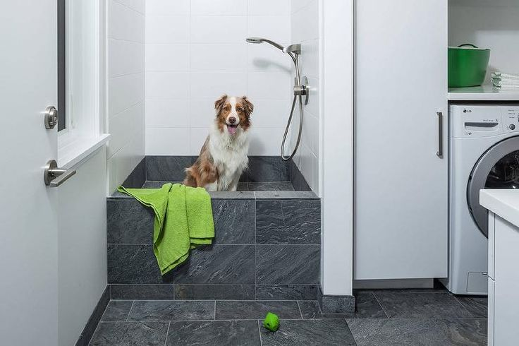White and gray contemporary laundry room boasts dark gray floor tiles leading to a matching a dark gray tiled dog bath framed by white surround tiles finished with a polished nickel sprayer.