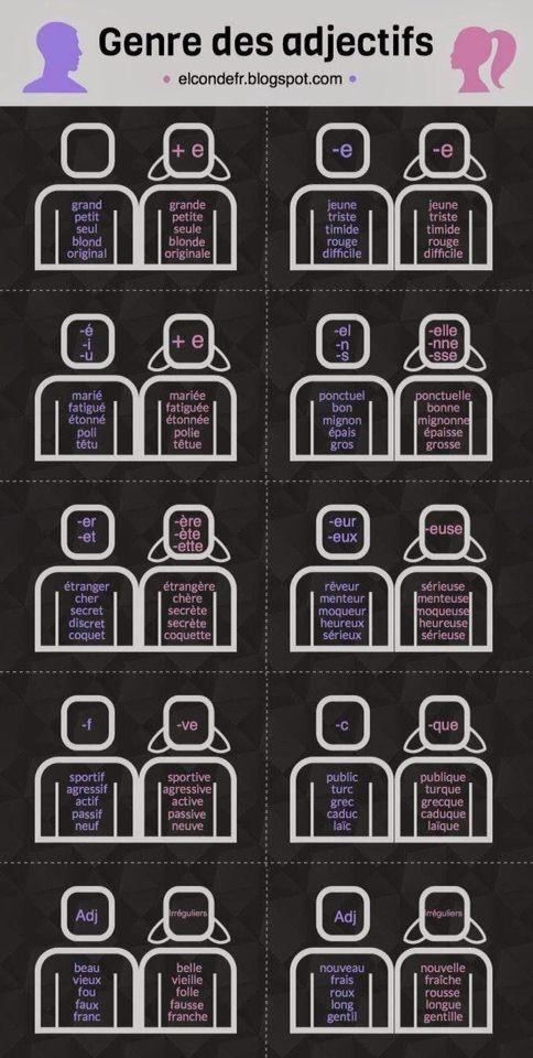 Genre des adjectifs
