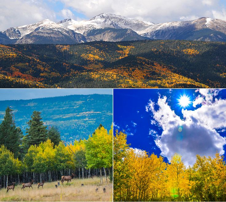 Escape to the Southern Rocky Mountains this Fall to take in the brilliant shades of autumn as the aspen leaves turn gold. Fall Activities in Angel Fire, NM Golf Come tee off at 8,500′ on our par 72, 6,653 yard, 18-hole golf course surrounded by the majestic southern Rocky Mountains that turn into golden hues …
