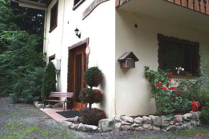 Morzine Apartment rental: Chalet Andu - Petit Apartment