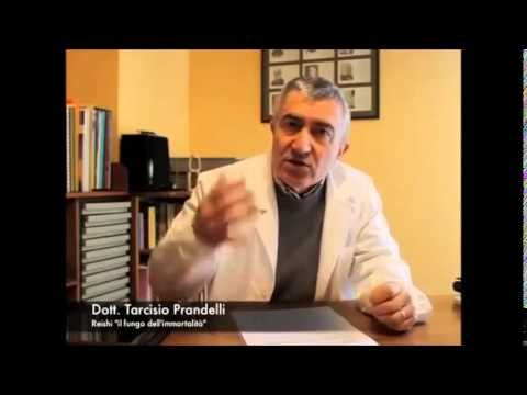 I benefici del Ganoderma Lucidum spiegati dal dottor Tarcisio Prandelli.