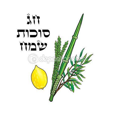 Happy Sukkot background. Hebrew translate: Happy Sukkot Holiday. Jewish traditional four species for Jewish Holiday Sukkot. Vector illustration. — Stock Vector © sofiartmedia.gmail.com #123026828