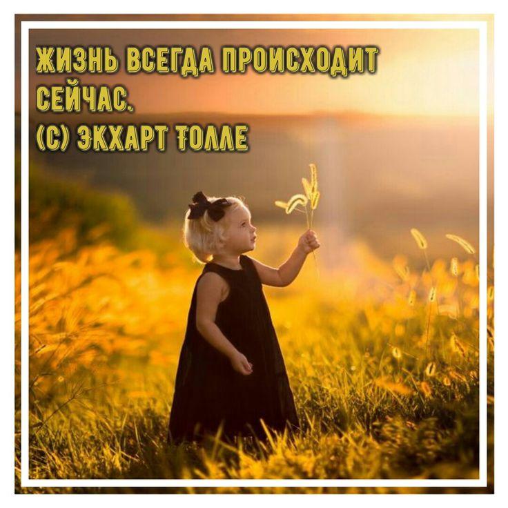 #цитаты #мудрыецитаты #жизнь #экхарттолле #толле #экхарт #радость #душевно #момент #эзотерика